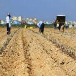 El Trasvase clave en el equilibrio demográfico en la región del Segura