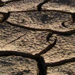 El Trasvase Tajo-Segura: solución en la lucha contra la desertificación