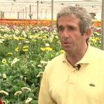 El sector hortofrutícola español referente en Europa gracias al agua del Trasvase (por José María Pérez)