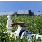 La agricultura del Trasvase Tajo-Segura: un sector estratégico
