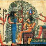 El Hijo de Sicómoro (III)