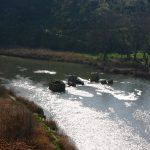 Climatología adversa en el Sureste español