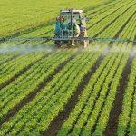 El Sistema Agrario del Levante