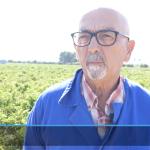 Sin el agua del Trasvase Tajo-Segura la agricultura del Levante no podría sobrevivir.